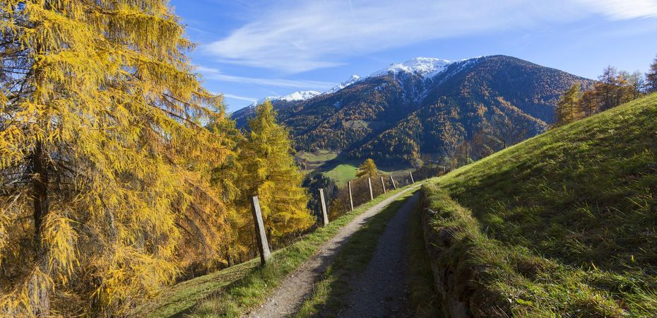HERBSTFLAIR am Fuss des Ortler im Nationalpark Stilfserjoch
